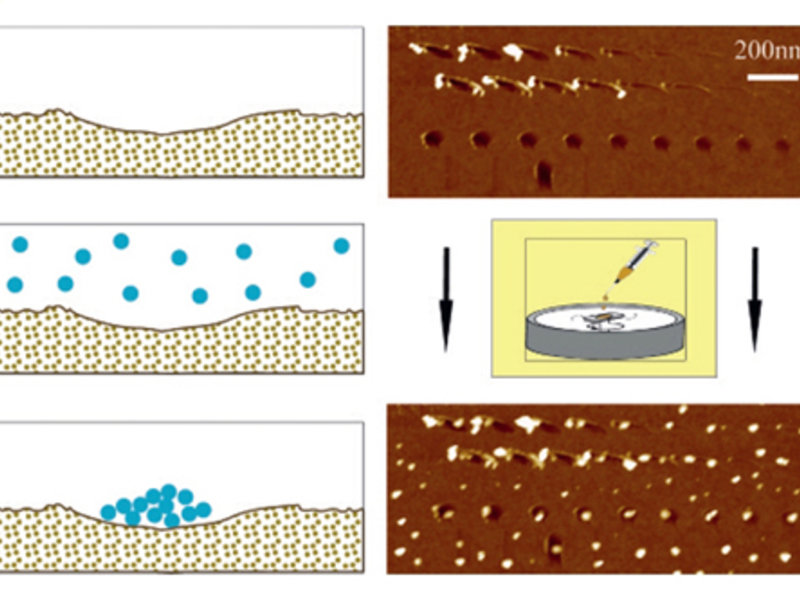 Fig. 1a: Influence of indentations in SiO2 surfaces (depth <2nm!) on the location and growth of C60 aggregates.