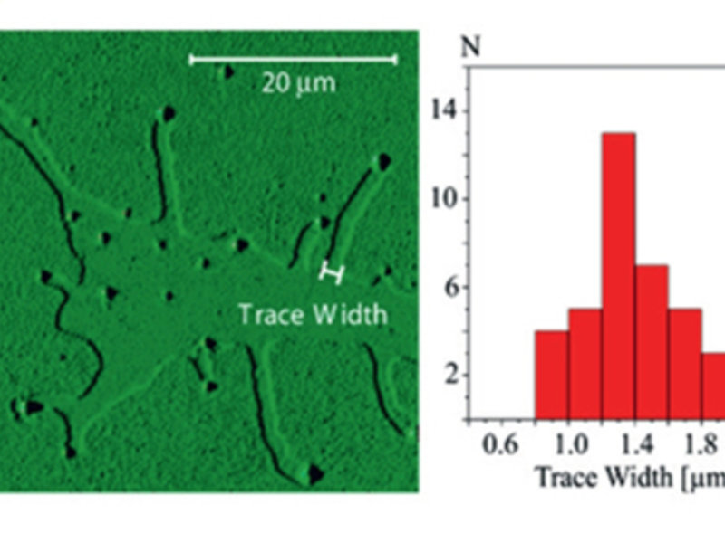 Fig. 3a: Surface partially covered with a solid alkane monolayer heated above melting and then rapidly cooled (→ fixed topology for AFM, trace width at the terrace edge = original droplet size).