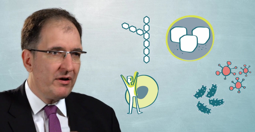 How Can Vaccine Design Be Modified by the Use of Synthetic Sugars? (23. Mai 2017)