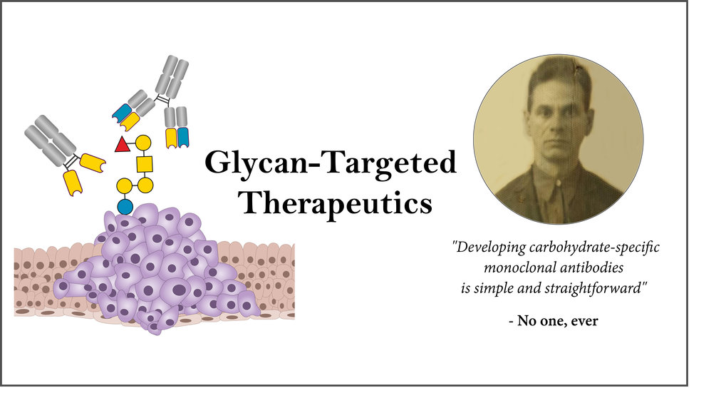 Glycan-Targeted Therapeutics