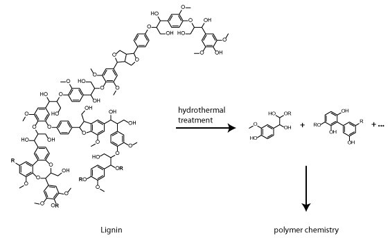 Polymers from Renewable Lignin Feedstocks
