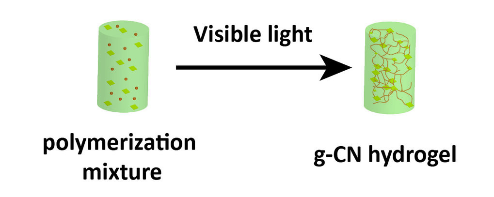 Carbon nitride (CN) is well-known for its photocatalytic properties that are triggered by visible light. In our research we utilize CN as photoinitiator for the formation of hydrogels via visible light.