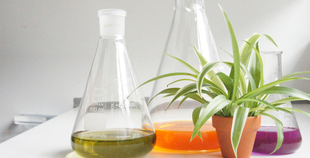Sustainable Solvents for Green Processes